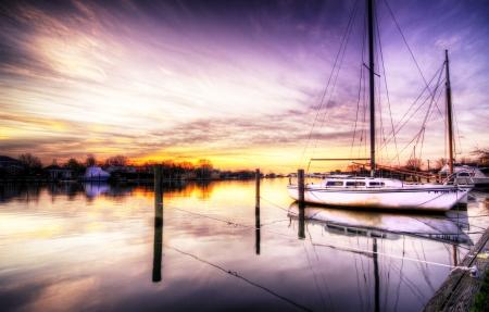 Purple Sunrise photo