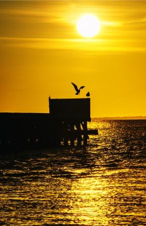 Sunrise Scene Stock Photo