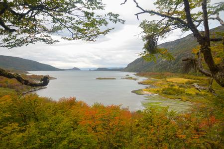 patagonia: national park of Patagonia
