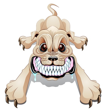 perro furioso: Enojado perro gru�e con la boca abierta