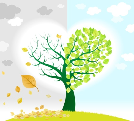 albero della vita: Albero cambio di stagione che rappresenta con foglie verdi e secche