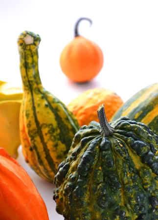 Bunch of gourds of different color and shape photo