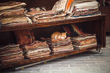 Cat sitting on stacked colorful fabrics, Istanbul, Turkey
