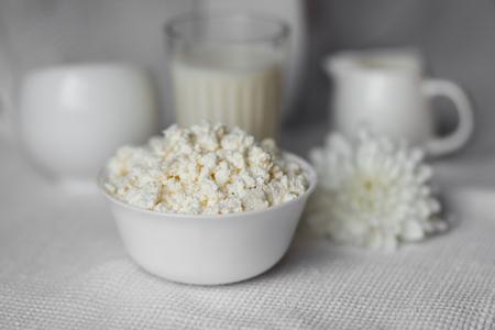 Homemade cottage cheese on white bowl Reklamní fotografie