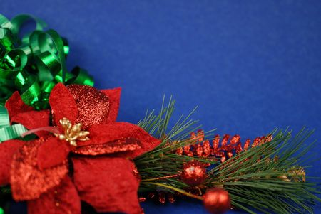 decoraton: poinsettia on blue background Stock Photo
