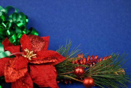 decoraton: poinsettia on blue background Stock Photo