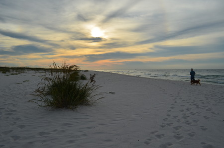 early morning dog walk on beach Stock Photo