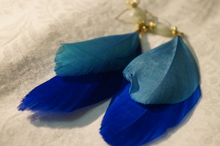 feathered: Feathered Earrings Stock Photo