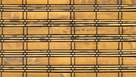 bamboo close-up texture (for mapping) photo