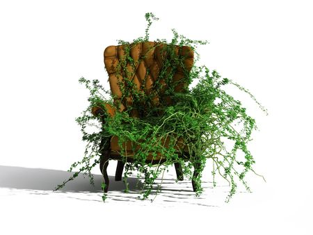 reserved seat: growed by green plant brown leather armchair Stock Photo