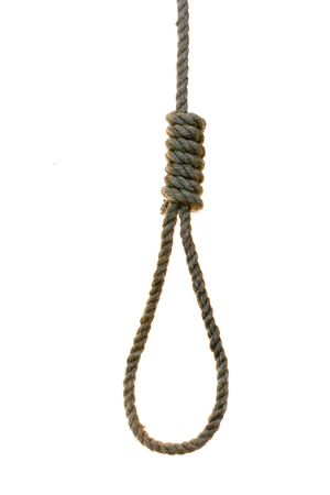 noose over the white background photo
