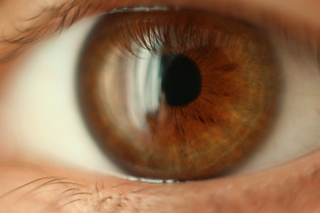 the close-up human eye image Stock Photo - 1497656