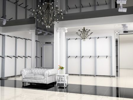 the modern shop interior design project (3D image)