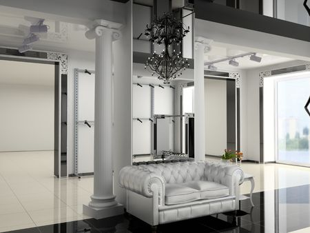 boutique display: the modern shop interior design project (3D image)