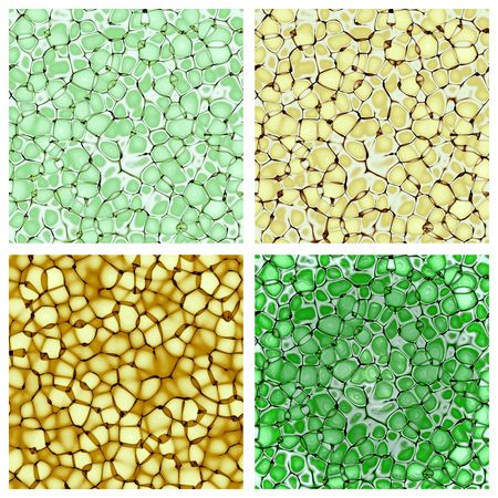 biology cellulate texture backgrounds set (CG) photo