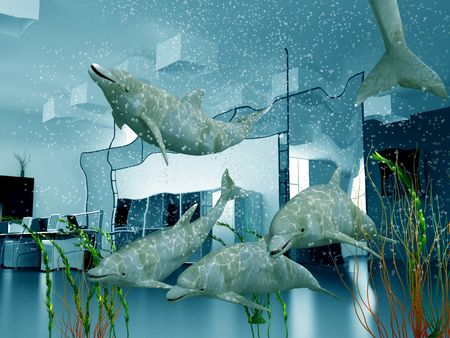 the group of dolphins in modern office interior (3D) photo