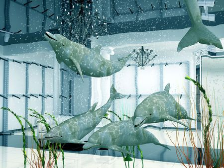 group of the dolphins in modern shop interior (3D) photo