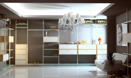 modern wardrobe interior (3D rendering) Stock Photo - 3091774