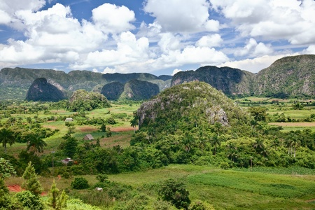 The valley of Vinales in Cuba.  photo