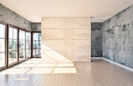 light room: large spacious room, illuminated by natural light from windows