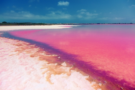 laguna: The salty shore of the Laguna Salada de Torrevieja Spain   The water looks pink due to a special algae that grows in high levels of salt