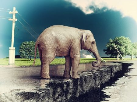 road rage: elephant on the cracked road  concept