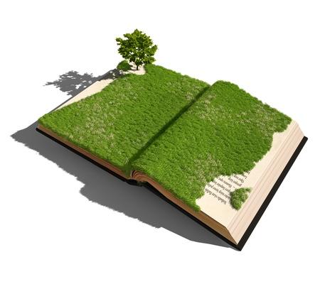 historias biblicas: libro abierto con césped y árboles concepto ilustrado