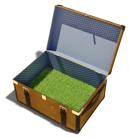 green grass meadow, as the contents of a vintage suitcase Stock Photo - 16785042