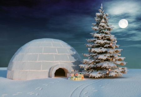 christmas igloo at the evening  photo