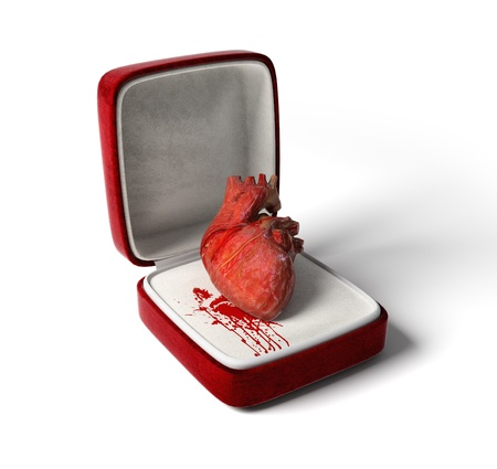 openly: anatomical heart as a love gift  3D concept  Stock Photo