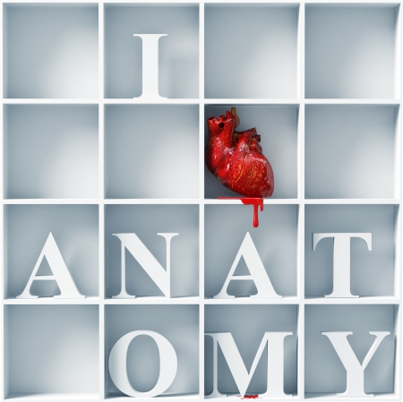 realism: I love anatomy - bizarre style message  3D concept  Stock Photo
