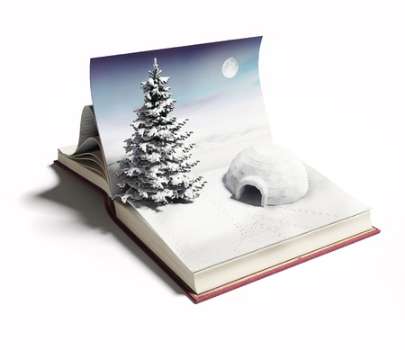 igloo: igloo on the open book  3d concept Stock Photo