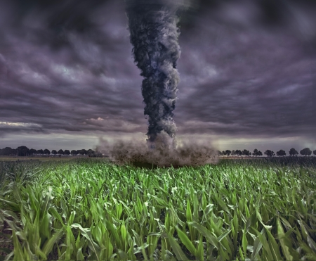 large tornado over the meadow  photo and 3D elements compilation