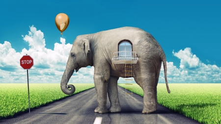 elephant as a house on the road  concept  photo and hand-drawing elements combined   Stock Photo
