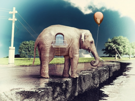 elephant as a house on the cracked road  concept   photo and hand-drawing elements combined    photo