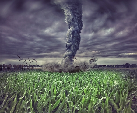 large tornado over the meadow  photo  elements compilation