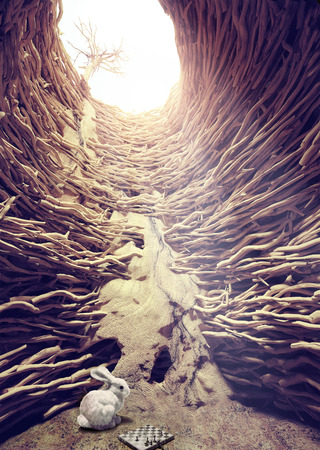 Conejo y el ajedrez en agujero profundo hacia el concepto creativo luz solar Foto de archivo - 26827132