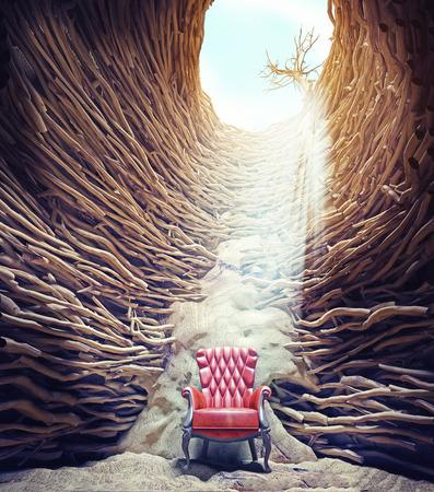 trenzado: armchir en el agujero, las ra�ces del �rbol trenzado y la luz del sol