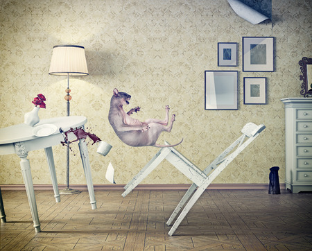 discomfiture: cat falling  in vintage room. 3d concept