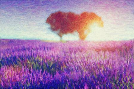 Original oil painting of lavender fields on cardboard. Sunset landscape.Modern Impressionism  photo