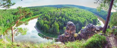 larix sibirica: panoramic view of siberian taiga landscape at summer