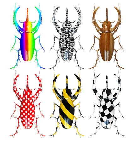 beetles: set of different pattern colored beetles Stock Photo
