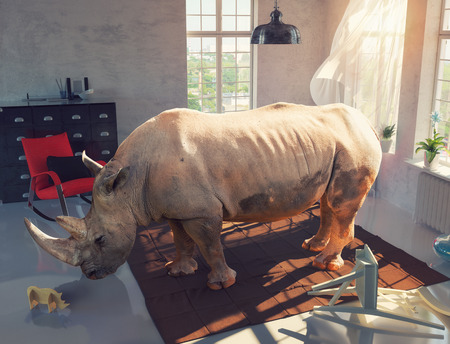 rhinoceros in the room looking at the wooden toy. Photo combinated concept Banco de Imagens