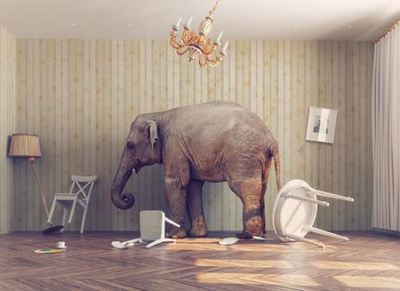 een olifant rust in een kamer. foto combinated begrip