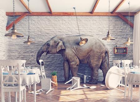 an elephant calm in a restaurant interior. photo combination concept