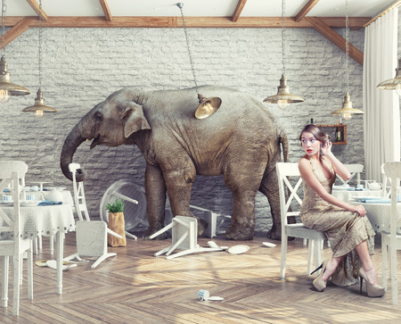 the elephant calm in a restaurant interior. photo combination concept