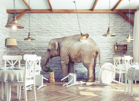een olifant rust in een restaurant interieur. foto combinatie concept Stockfoto