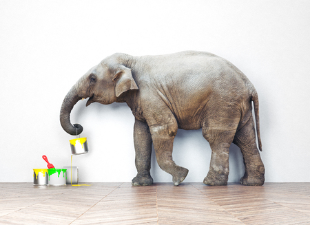paint cans: An elephant with paint cans. Photo combination concept