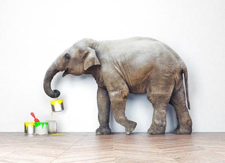 Een olifant met verfblikken. Foto combinatie concept