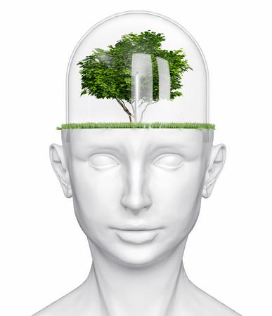 testa umana bianca con albero (concetto 3D)